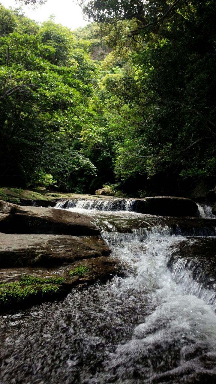 小川 滝へ流れる