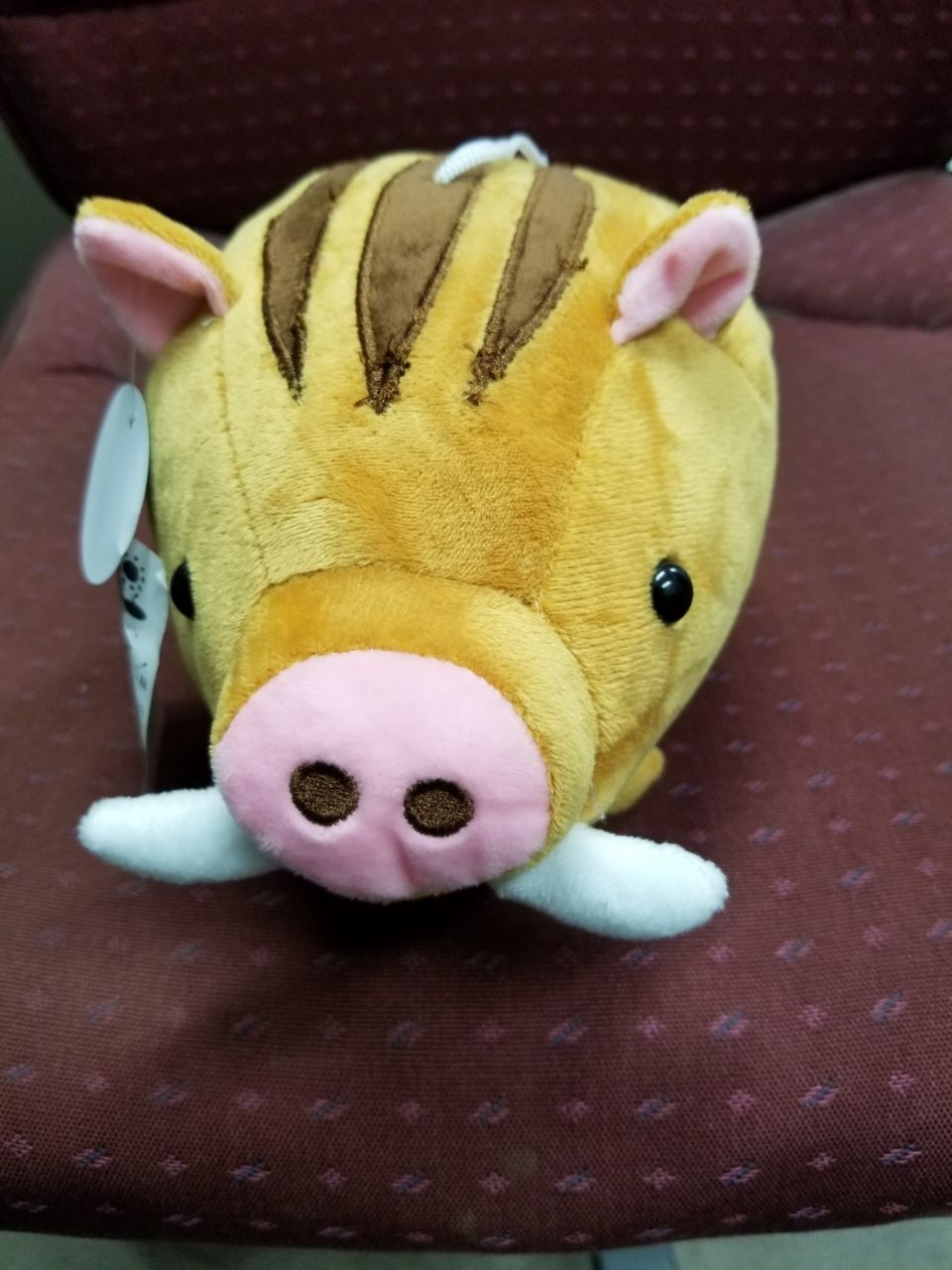 猪パック (2)